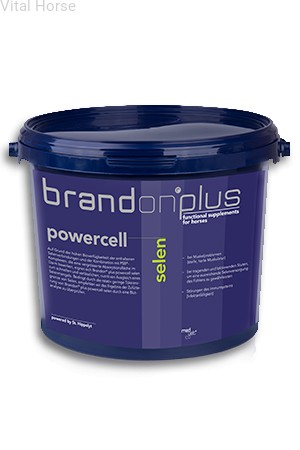 Brandon Plus Powercell Selen Vital Horse