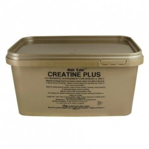 CREATINE PLUS- suplement z kreatyną